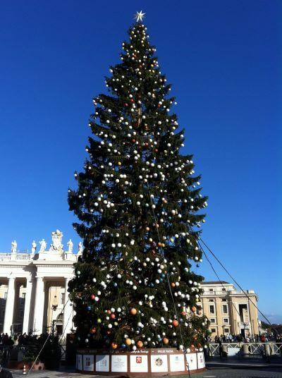 Juletræ på Peterspladsen i Rom